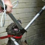Animal-control-2