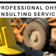 OHS Consultant in Sydney