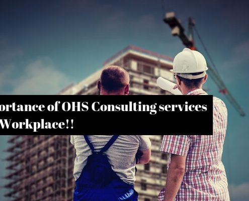 Benchmark OHS Consultant